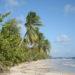 La Martinique pour 570€ par personne !